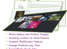 Wesite Designing and Development